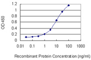 AAMP Antibody - Detection limit for recombinant GST tagged AAMP is 0.3 ng/ml as a capture antibody.