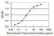 Detection limit for recombinant GST tagged ABLIM1 is 0.03 ng/ml as a capture antibody.