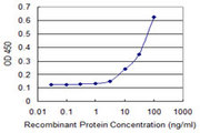Detection limit for recombinant GST tagged FANCB is 3 ng/ml as a capture antibody.