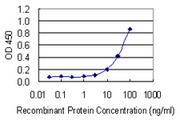 Enzyme-Linked Immunosorbent Assay Image