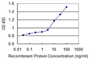 Detection limit for recombinant GST tagged ARSB is 1 ng/ml as a capture antibody.