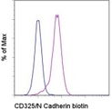 CDH2 / N Cadherin Antibody - Staining of the Hela cell line with Biotin Mouse IgG1, K isotype control (blue histogram) or Biotin anti-human CD325 (N-cadherin ) (purple histogram) followed by Sav-PE. Total viable cells were used for analysis. This image was taken for the unconjugated form of this product. Other forms have not been tested.