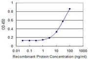 FDPS Antibody - Detection limit for recombinant GST tagged FDPS is 1 ng/ml as a capture antibody.