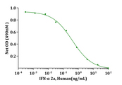 IFNA2A Protein - Biological Activity IFN-alpha 2a, Human induced cytotoxicity of R&D TF-1 cells. The ED 50 for this effect is less than 0.1ng/mL.