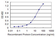 Detection limit for recombinant GST tagged IGSF6 is 0.3 ng/ml as a capture antibody.
