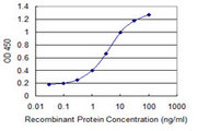 Detection limit for recombinant GST tagged IL24 is 0.1 ng/ml as a capture antibody.
