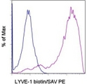 Staining of LYVE-1 transfected cells with 0.06 ug of Biotin Rat IgG1 isotype control (blue histogram) or 0.06 ug of Biotin anti-mouse LYVE-1 (Lymphatic Vessel Endothelial Receptor 1) (purple histogram) followed by Streptavidin-PE. Total viable cells were used for analysis. This image was taken for the unconjugated form of this product. Other forms have not been tested.