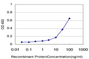 MACS / RIN2 Antibody - Detection limit for recombinant GST tagged RIN2 is approximately 1 ng/ml as a capture antibody.