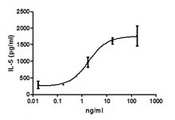 IL-33 Protein - IL-5 induction by mouse IL-33 in splenocytes activated by anti-CD3 and anti-CD28. Data kindly provided Dr. Foo Y. Liew.