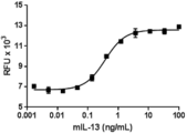 IL13 Protein - Recombinant mouse IL-13 induces the proliferation of TF-1 cell in a dose-dependent manner. The ED50 for this effect is 0.3 - 1.5 ng/mL.