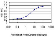 Pyrin / MEFV / MEF Antibody - Detection limit for recombinant GST tagged MEFV is approximately 0.1 ng/ml as a capture antibody.