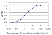 RABIF Antibody - Detection limit for recombinant GST tagged RABIF is approximately 0.03 ng/ml as a capture antibody.