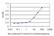 RPL32 / Ribosomal Protein L32 Antibody - Detection limit for recombinant GST tagged RPL32 is approximately 0.3 ng/ml as a capture antibody.