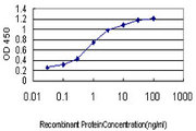 TAF1L Antibody - Detection limit for recombinant GST tagged TAF1L is approximately 0.03 ng/ml as a capture antibody.