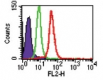 Intracellular flow analysis of TLR8 in Ramos cells using 2 ug of TLR8 Antibody. Shaded histogram represents Ramos cells without antibody; green represents isotype control, ; red represents anti-TLR8 antibody. This image was taken for the unconjugated form of this product. Other forms have not been tested.