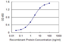 Detection limit for recombinant GST tagged AATF is 0.03 ng/ml as a capture antibody.