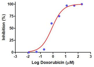 Dose-response curve of MCF-7 cells to Doxorubicin for 72 hours determined by the ACP Cytotoxicity Assay. Assays were performed according to the kit protocol in triplicate. The determined IC50 is 0.82 µM.