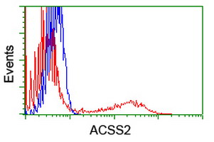 HEK293T cells transfected with either overexpress plasmid (Red) or empty vector control plasmid (Blue) were immunostained by anti-ACSS2 antibody, and then analyzed by flow cytometry.