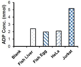 Measurement of ADP in fish liver (100 µg), fish egg (200 µg) & HeLa & Jurkat cell lysate (100 µg).