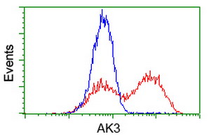 AK3 / Adenylate Kinase 3 Antibody - HEK293T cells transfected with either overexpress plasmid (Red) or empty vector control plasmid (Blue) were immunostained by anti-AK3 antibody, and then analyzed by flow cytometry.