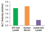 ALT Activity (mU/ml) in 3T3 Cell Lysate (2.5 µl, 12 mg/ml protein), Pooled Human Serum (2.5 µl), and Jurkat Cell Lysate (1.25 µl, 4 mg/ml protein).