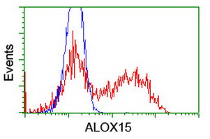ALOX15 / 15-Lipoxygenase Antibody - HEK293T cells transfected with either overexpress plasmid (Red) or empty vector control plasmid (Blue) were immunostained by anti-ALOX15 antibody, and then analyzed by flow cytometry.