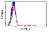 HEK293T cells transfected with either overexpress plasmid (Red) or empty vector control plasmid (Blue) were immunostained by anti-NIF3L1 antibody, and then analyzed by flow cytometry.