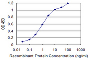Detection limit for recombinant GST tagged KIT is 0.03 ng/ml as a capture antibody.