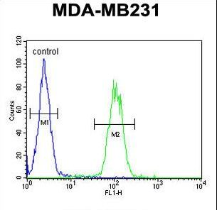 AP1S1 Antibody - AP1S1 Antibody flow cytometry of MDA-MB231 cells (right histogram) compared to a negative control cell (left histogram). FITC-conjugated goat-anti-rabbit secondary antibodies were used for the analysis.
