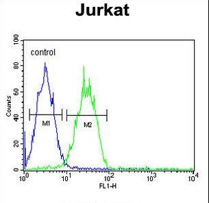 ARGLU1 Antibody - ARGLU1 Antibody flow cytometry of Jurkat cells (right histogram) compared to a negative control cell (left histogram). FITC-conjugated goat-anti-rabbit secondary antibodies were used for the analysis.