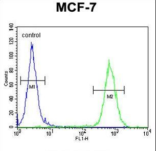 ARHGAP44 Antibody - RICH2 Antibody flow cytometry of MCF-7 cells (right histogram) compared to a negative control cell (left histogram). FITC-conjugated goat-anti-rabbit secondary antibodies were used for the analysis.