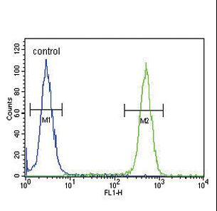 ASMT Antibody flow cytometry of 293 cells (right histogram) compared to a negative control cell (left histogram). FITC-conjugated goat-anti-rabbit secondary antibodies were used for the analysis.