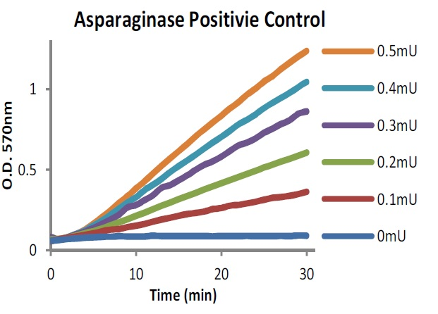 Measure of Asparaginase Activity over time.