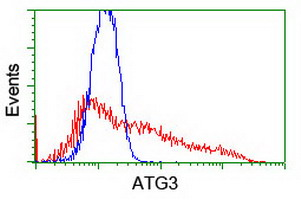 HEK293T cells transfected with either overexpress plasmid (Red) or empty vector control plasmid (Blue) were immunostained by anti-ATG3 antibody, and then analyzed by flow cytometry.