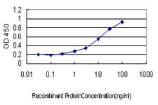 Detection limit for recombinant GST tagged ATP2A3 is approximately 0.3 ng/ml as a capture antibody.
