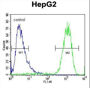 ATP5H Antibody - ATP5H Antibody flow cytometry of HepG2 cells (right histogram) compared to a negative control cell (left histogram). FITC-conjugated goat-anti-rabbit secondary antibodies were used for the analysis.