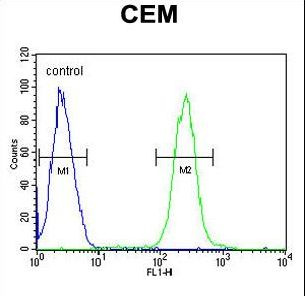 ATP6V0A4 Antibody - ATP6V0A4 Antibody flow cytometry of CEM cells (right histogram) compared to a negative control cell (left histogram). FITC-conjugated goat-anti-rabbit secondary antibodies were used for the analysis.