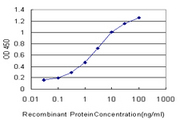 Detection limit for recombinant GST tagged ATRX is approximately 0.1 ng/ml as a capture antibody.