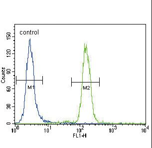 BBC3 / PUMA Antibody - Puma BH3 Domain Antibody flow cytometry of HeLa cells (right histogram) compared to a negative control cell (left histogram). FITC-conjugated goat-anti-rabbit secondary antibodies were used for the analysis.
