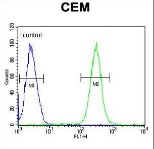 BCAN / Brevican Antibody - BCAN Antibody flow cytometry of CEM cells (right histogram) compared to a negative control cell (left histogram). FITC-conjugated goat-anti-rabbit secondary antibodies were used for the analysis.