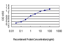 BCAR3 Antibody - Detection limit for recombinant GST tagged BCAR3 is approximately 0.03 ng/ml as a capture antibody.