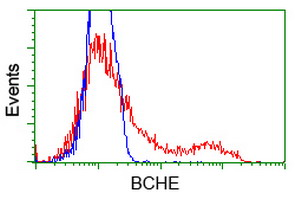HEK293T cells transfected with either overexpress plasmid (Red) or empty vector control plasmid (Blue) were immunostained by anti-BCHE antibody, and then analyzed by flow cytometry.
