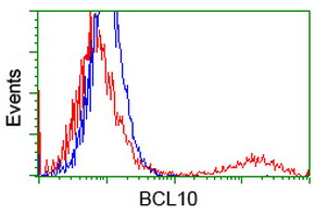 BCL10 / BCL-10 Antibody - HEK293T cells transfected with either overexpress plasmid (Red) or empty vector control plasmid (Blue) were immunostained by anti-BCL10 antibody, and then analyzed by flow cytometry.