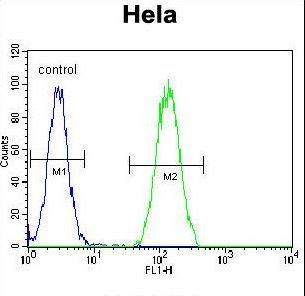 BMP2 Antibody flow cytometry of HeLa cells (right histogram) compared to a negative control cell (left histogram). FITC-conjugated goat-anti-rabbit secondary antibodies were used for the analysis.