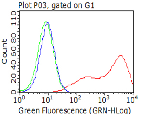 BTLA / CD272 Antibody - Flow cytometric analysis of living 293T cells transfected with BTLA overexpression plasmid , Red)/empty vector  Blue) using anti-BTLA antibody. Cells incubated with a non-specific antibody. (Green) were used as isotype control. (1:100)