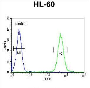BTNL3 Antibody flow cytometry of HL-60 cells (right histogram) compared to a negative control cell (left histogram). FITC-conjugated goat-anti-rabbit secondary antibodies were used for the analysis.