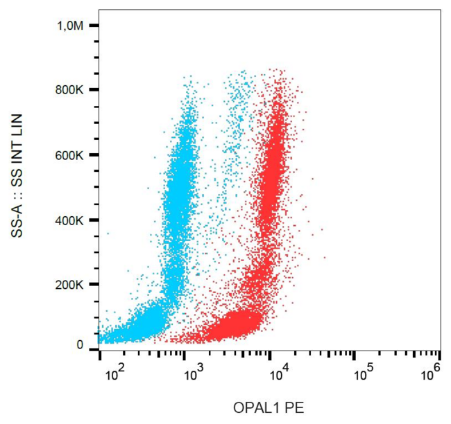 C10orf26 / OPAL1 Antibody - Flow cytometry analysis of OPAL1 in human peripheral blood + lyophilized SP2 cells using mouse monoclonal antibody anti-OPAL1 (OPAL1-01) PE.