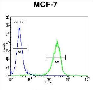 C15orf27 Antibody - CO027 Antibody flow cytometry of MCF-7 cells (right histogram) compared to a negative control cell (left histogram). FITC-conjugated goat-anti-rabbit secondary antibodies were used for the analysis.
