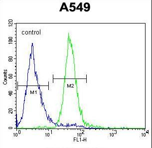 C15orf39 Antibody - CO039 Antibody flow cytometry of A549 cells (right histogram) compared to a negative control cell (left histogram). FITC-conjugated goat-anti-rabbit secondary antibodies were used for the analysis.