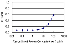 Detection limit for recombinant GST tagged C21orf2 is 3 ng/ml as a capture antibody.